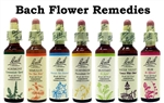 One Each of the 38 Bach Flower Remedies (20ml)