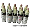 38x Bach Flower's Essence- Alcohol Free 10ml (One each)