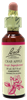 Crab Apple 20ml