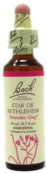 Star of Bethlehem 20ml