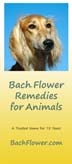 Free Literature - Bach Flower Remedies for Pets