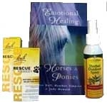 Starter Kit for Horse Lovers
