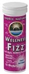 Source Naturals Wellness Fizz® 10 wafers